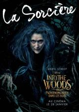 INTO THE WOODS  - Poster : La sorci�re