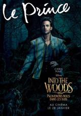 INTO THE WOODS  - Poster : Le prince