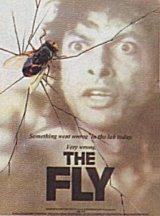 La Mouche Fly