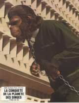 CONQUEST OF THE PLANET OF THE APES Lobby card