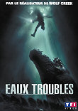 Critique : EAUX TROUBLES (ROGUE)