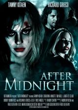 AFTER MIDNIGHT (2013) - Poster